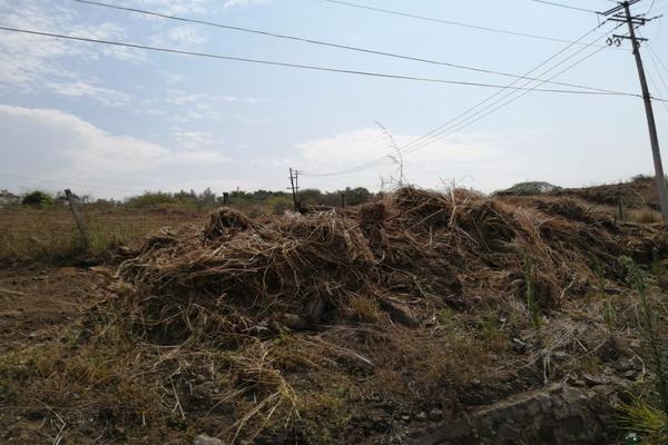 Foto de terreno habitacional en venta en los colomos , los aguajes, comala, colima, 15170686 No. 03
