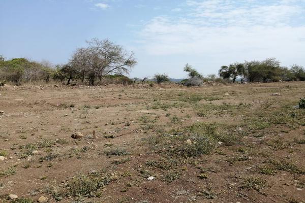 Foto de terreno habitacional en venta en los colomos , los aguajes, comala, colima, 0 No. 02
