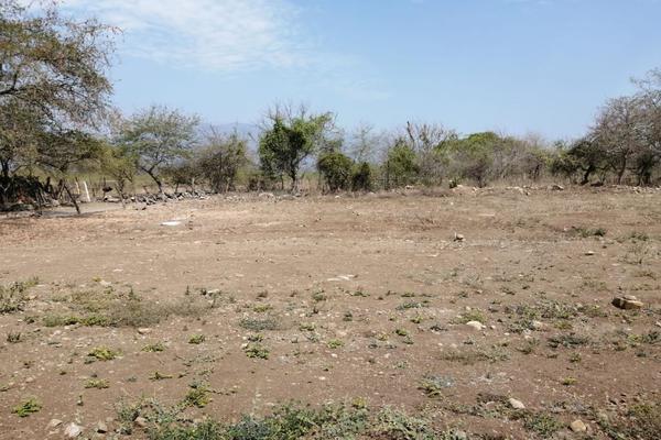 Foto de terreno habitacional en venta en los colomos , los aguajes, comala, colima, 0 No. 05
