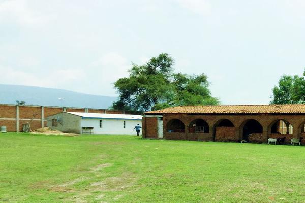 Foto de terreno habitacional en venta en los dolores , santa cruz de las flores, tlajomulco de zúñiga, jalisco, 15174674 No. 09
