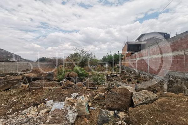Foto de terreno habitacional en venta en  , los ejidos, morelia, michoacán de ocampo, 0 No. 01