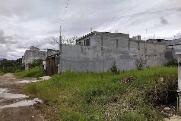 Foto de terreno habitacional en venta en  , los encinos, fortín, veracruz de ignacio de la llave, 5670965 No. 07