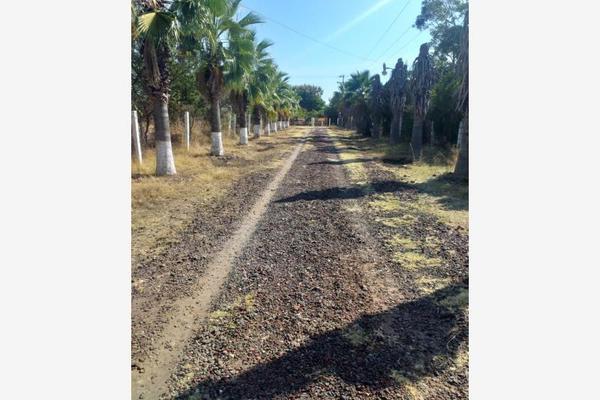 Foto de terreno habitacional en venta en  , los laureles, axochiapan, morelos, 0 No. 01