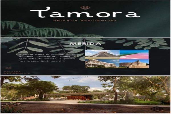 Foto de terreno habitacional en venta en  , los laureles, conkal, yucatán, 10997664 No. 13