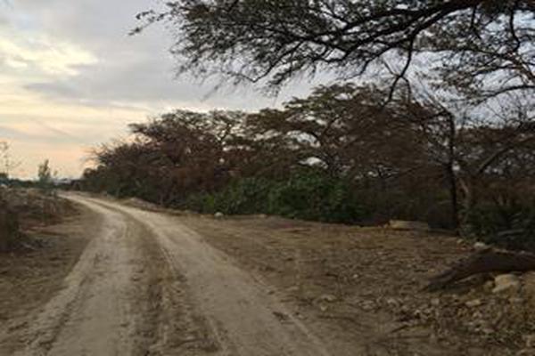 Foto de terreno habitacional en venta en  , los lermas, guadalupe, nuevo león, 11567306 No. 19