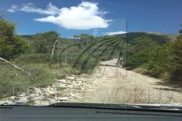 Foto de terreno habitacional en venta en, los lirios, arteaga, coahuila de zaragoza, 1381613 no 01
