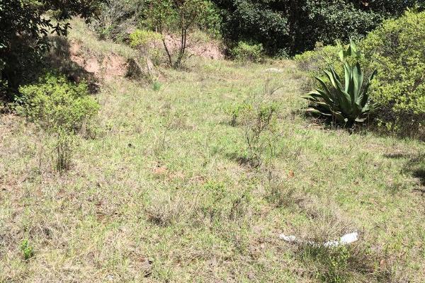 Foto de terreno comercial en venta en los nogales , san josé capulines, mineral del chico, hidalgo, 6153353 No. 07