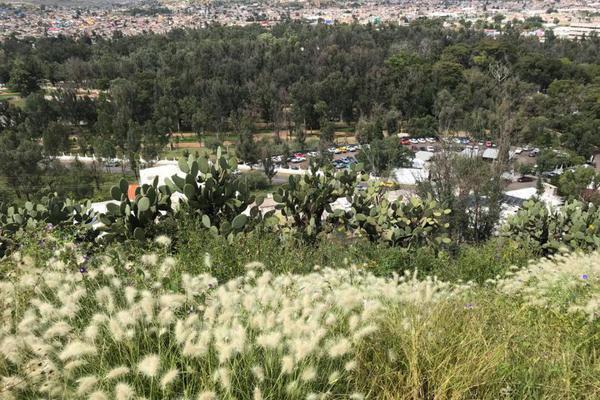 Foto de terreno habitacional en venta en los remedios , los remedios, durango, durango, 0 No. 03