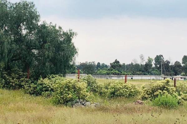 Foto de terreno comercial en venta en  , los reyes nopala, tepetlaoxtoc, méxico, 5916620 No. 04