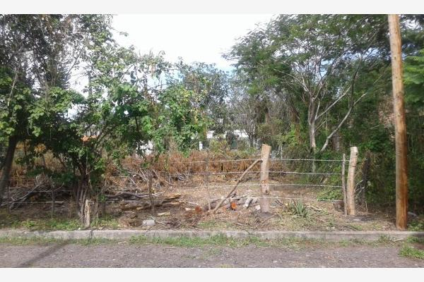 Foto de terreno habitacional en venta en  , los reyes, tepalcingo, morelos, 12276404 No. 04