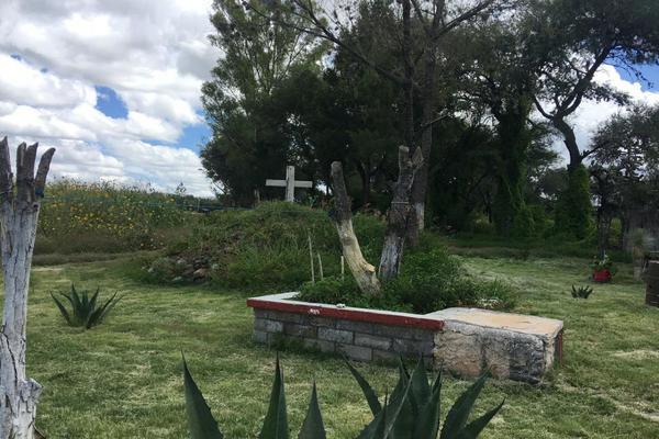 Foto de rancho en venta en  , los ricos de abajo, san miguel de allende, guanajuato, 7299933 No. 06