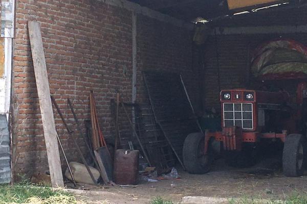 Foto de rancho en venta en  , los ricos de abajo, san miguel de allende, guanajuato, 7299933 No. 07