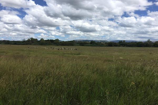 Foto de rancho en venta en  , los ricos de abajo, san miguel de allende, guanajuato, 7299933 No. 18