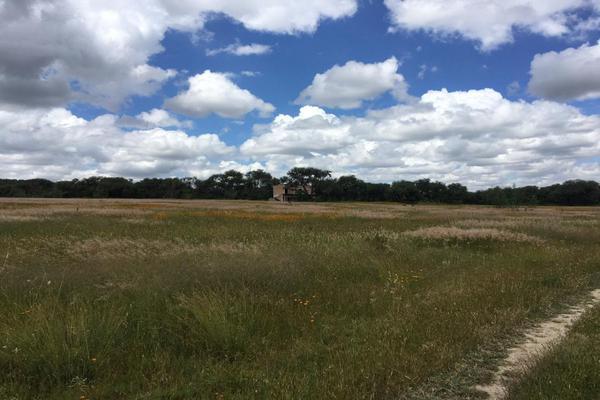 Foto de rancho en venta en  , los ricos de abajo, san miguel de allende, guanajuato, 7299933 No. 20