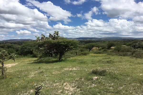 Foto de rancho en venta en  , los ricos de abajo, san miguel de allende, guanajuato, 7299933 No. 28