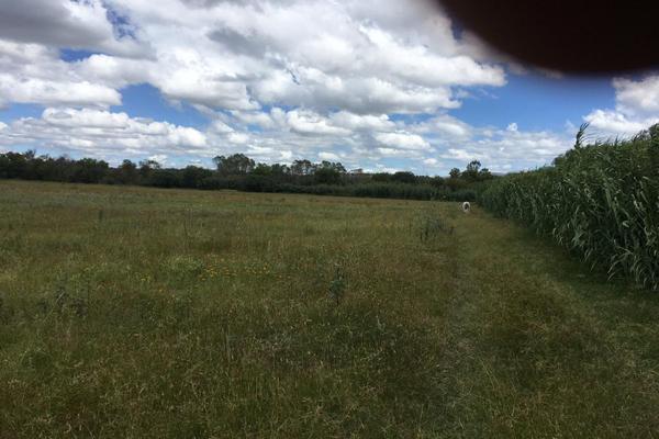 Foto de rancho en venta en  , los ricos de abajo, san miguel de allende, guanajuato, 7299933 No. 31