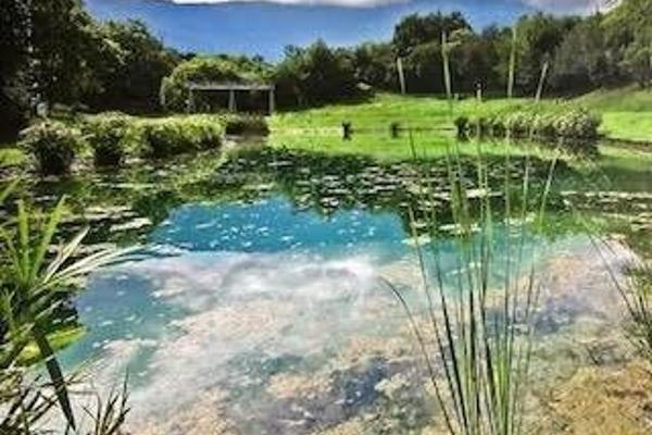 Foto de terreno habitacional en venta en  , los rodriguez, santiago, nuevo león, 14029028 No. 02