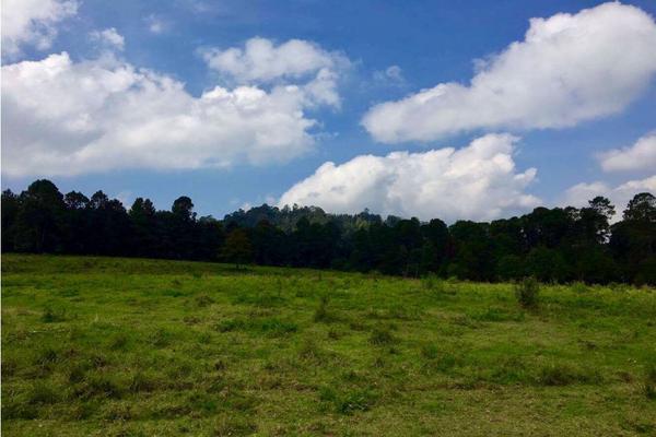 Foto de terreno habitacional en venta en  , los saúcos, valle de bravo, méxico, 9304786 No. 03