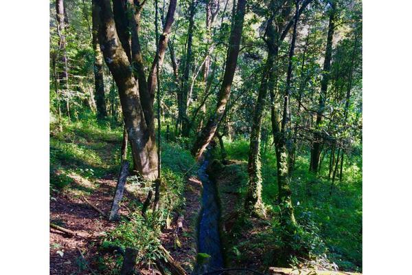 Foto de terreno habitacional en venta en  , los saúcos, valle de bravo, méxico, 9304786 No. 07