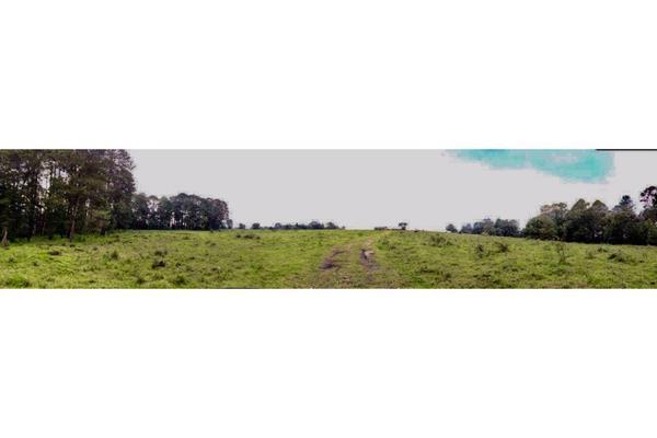 Foto de terreno habitacional en venta en  , los saúcos, valle de bravo, méxico, 9304786 No. 08