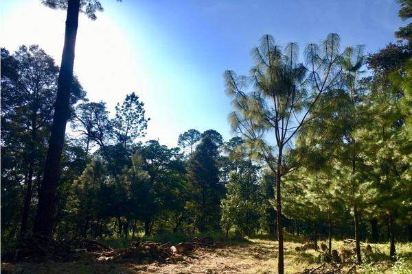 Foto de terreno habitacional en venta en  , los saúcos, valle de bravo, méxico, 9304786 No. 09