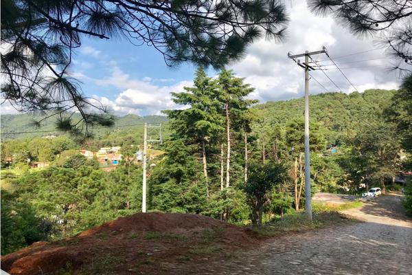 Foto de terreno habitacional en venta en  , los saúcos, valle de bravo, méxico, 9304850 No. 06