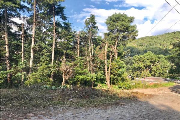 Foto de terreno habitacional en venta en  , los saúcos, valle de bravo, méxico, 9304850 No. 08