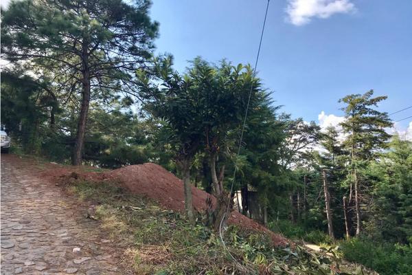 Foto de terreno habitacional en venta en  , los saúcos, valle de bravo, méxico, 9304850 No. 09