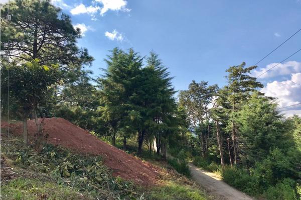 Foto de terreno habitacional en venta en  , los saúcos, valle de bravo, méxico, 9304850 No. 18