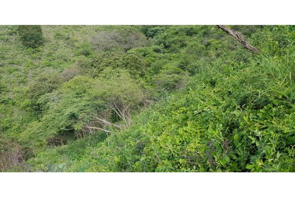 Foto de terreno habitacional en venta en  , los saúcos, valle de bravo, méxico, 9305092 No. 08