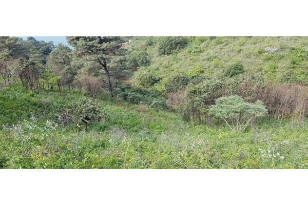 Foto de terreno habitacional en venta en  , los saúcos, valle de bravo, méxico, 9305092 No. 09