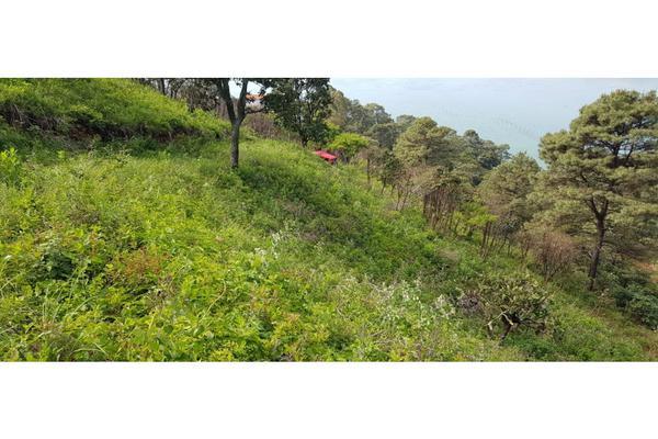 Foto de terreno habitacional en venta en  , los saúcos, valle de bravo, méxico, 9305092 No. 10