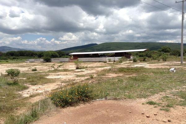 Foto de rancho en venta en  , los silvestres (la concepción), cadereyta de montes, querétaro, 8115971 No. 07