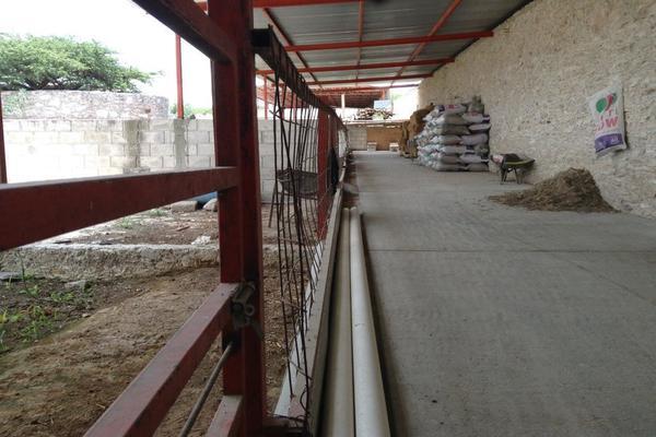Foto de rancho en venta en  , los silvestres (la concepción), cadereyta de montes, querétaro, 8115971 No. 15