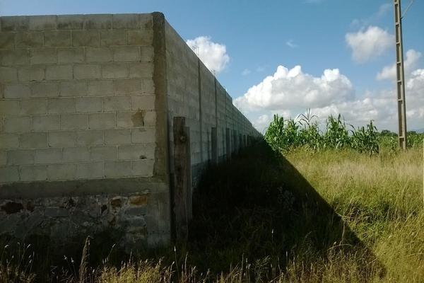 Foto de rancho en venta en  , los silvestres (la concepción), cadereyta de montes, querétaro, 8115971 No. 23