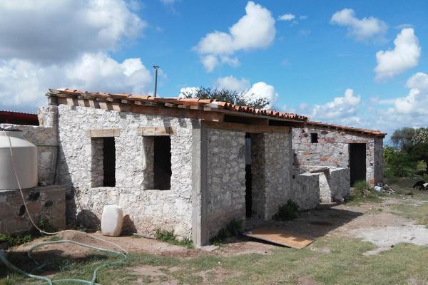 Foto de rancho en venta en  , los silvestres (la concepción), cadereyta de montes, querétaro, 8115971 No. 24