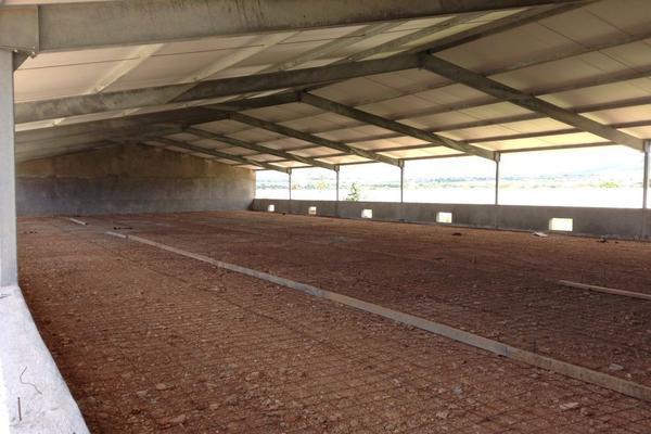 Foto de rancho en venta en  , los silvestres (la concepción), cadereyta de montes, querétaro, 8115971 No. 25