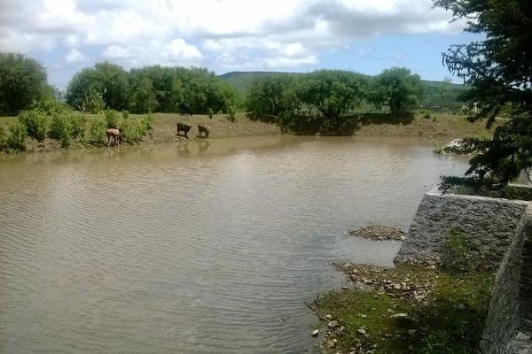 Foto de rancho en venta en  , los silvestres (la concepción), cadereyta de montes, querétaro, 8115971 No. 30
