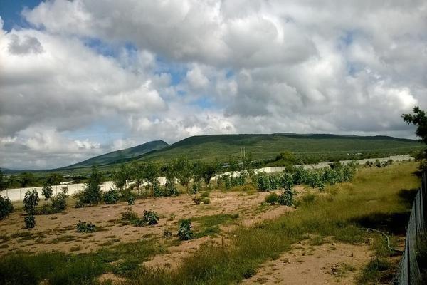 Foto de rancho en venta en  , los silvestres (la concepción), cadereyta de montes, querétaro, 8115971 No. 32
