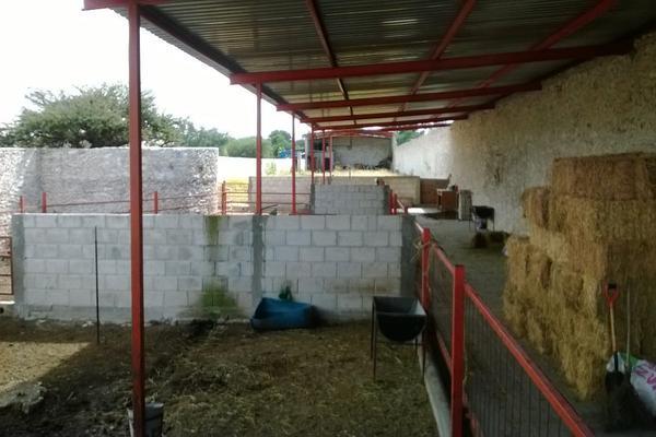 Foto de rancho en venta en  , los silvestres (la concepción), cadereyta de montes, querétaro, 8115971 No. 36