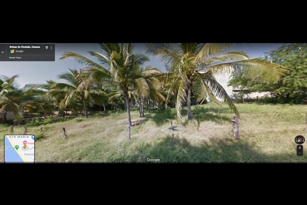 Foto de terreno habitacional en venta en  , los tamarindos, santa maría colotepec, oaxaca, 19354883 No. 02