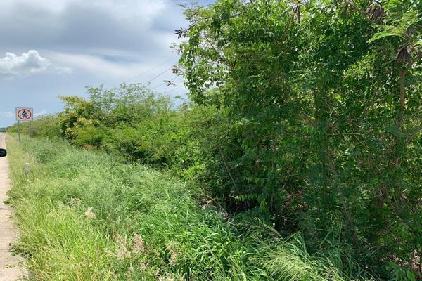 Foto de terreno comercial en venta en lote 1 manzana 34 , motul de carrillo puerto centro, motul, yucatán, 8895724 No. 04