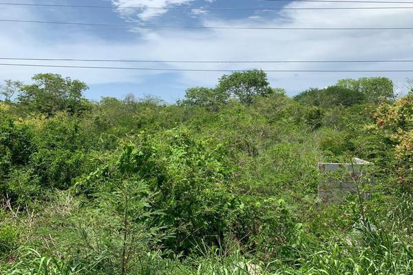 Foto de terreno comercial en venta en lote 1 manzana 34 , motul de carrillo puerto centro, motul, yucatán, 8895724 No. 05