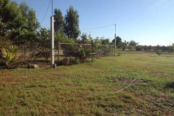 Foto de rancho en venta en lote 16, 17 y 18, flor azul s/n , flor azul, ahome, sinaloa, 3192092 No. 07
