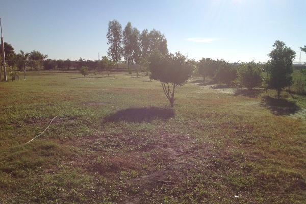Foto de rancho en venta en lote 16, 17 y 18, flor azul s/n , flor azul, ahome, sinaloa, 3192092 No. 08