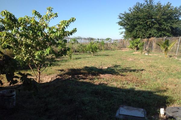 Foto de rancho en venta en lote 16, 17 y 18, flor azul s/n , flor azul, ahome, sinaloa, 3192092 No. 09