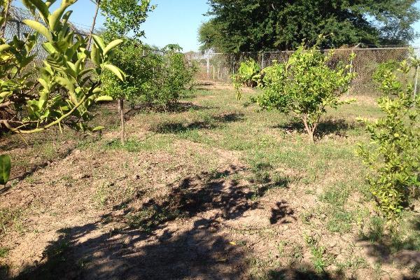 Foto de rancho en venta en lote 16, 17 y 18, flor azul s/n , flor azul, ahome, sinaloa, 3192092 No. 11