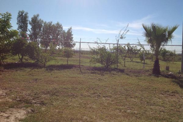 Foto de rancho en venta en lote 16, 17 y 18, flor azul s/n , flor azul, ahome, sinaloa, 3192092 No. 13