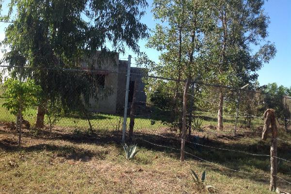 Foto de rancho en venta en lote 16, 17 y 18, flor azul s/n , flor azul, ahome, sinaloa, 3192092 No. 14