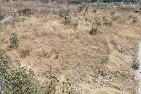 Foto de terreno habitacional en venta en lote 17 sotogrande , ajijic centro, chapala, jalisco, 13302966 No. 11